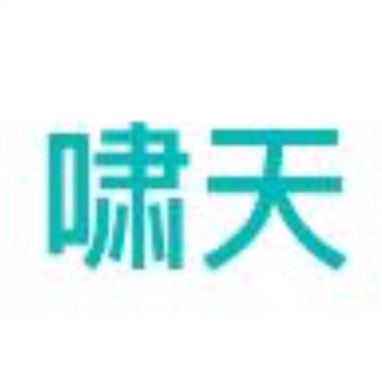 北京啸天网络科技有限公司